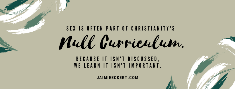 is sex sinful - christianity's null curriculum