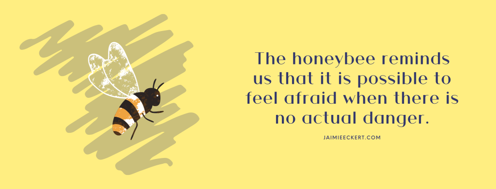 The honeybee reminds us that it is possible to feel afraid when there is no actual danger